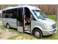 304 микроавтобус Mercedes Sprinter Vip серебро прокат с водителем - Київ 0