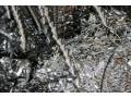 Закупаем стальную стружку и металлолом - Полтава 3