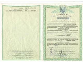 Объект на продажу под Киевом 30 мин. в сторону Обухова, Старые Безрадичи, Капустяная - Запоріжжя