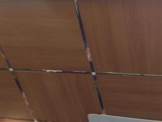 Металлические плиты для подвесного потолка под дерево - Київ