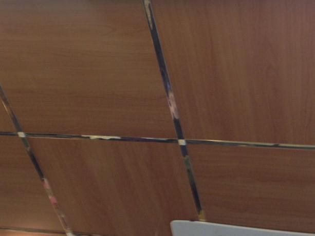 Металлические плиты для подвесного потолка под дерево - Київ 0