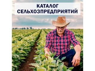 Каталог сельхозпредприятий Триполье. Актуальные контакты - Київ